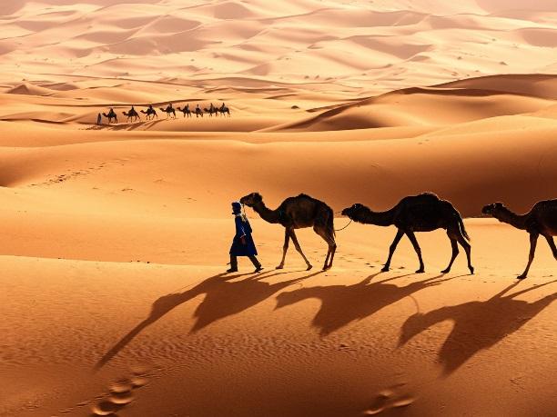 Контент аудит – как выйти из пустыни Сахара живым